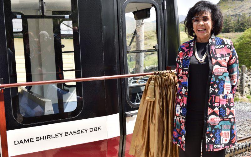 Ddameg Shirley Bassey DBE